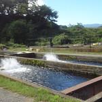養殖風景2