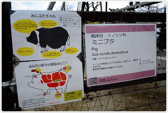 京都動物園 (15).jpg