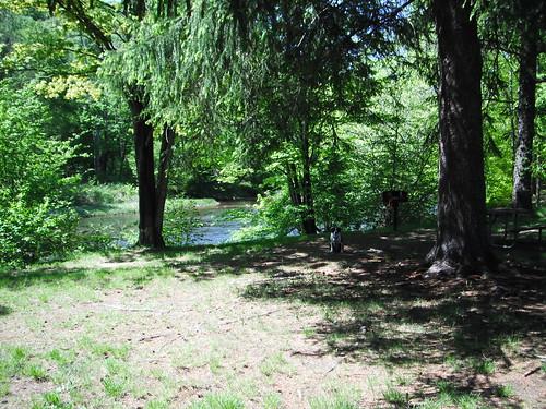 clarionriver pennsylvaniastateparks bendigostatepark