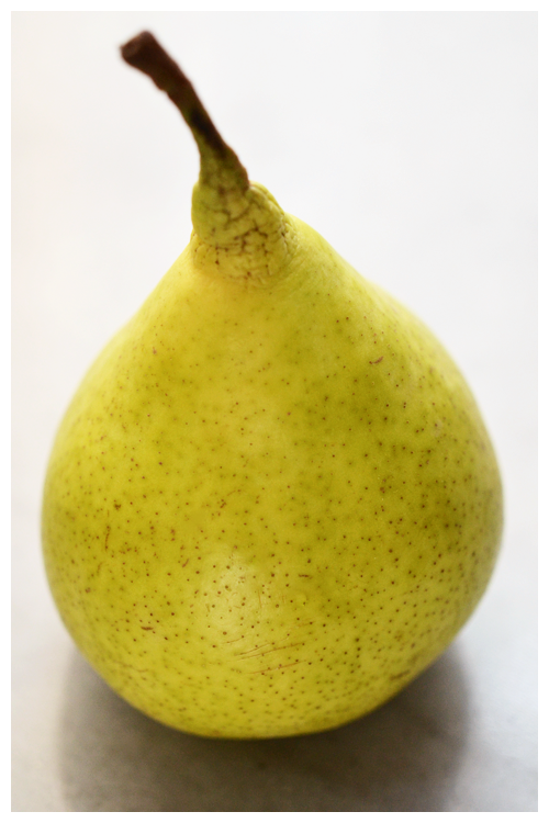 Josephine Pear© by Haalo