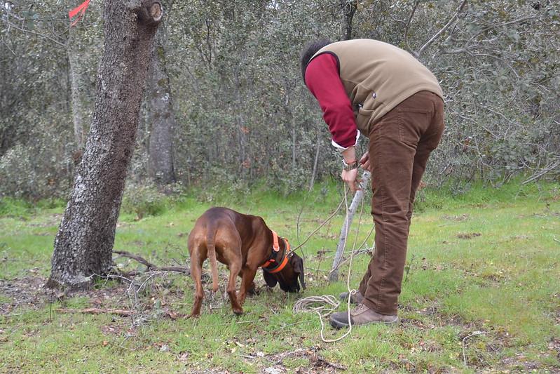 Reunión o rastros por Madrid - Página 3 8588793933_85195942c3_c