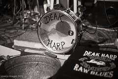 Deak Harp at Red's - Zoeica Images