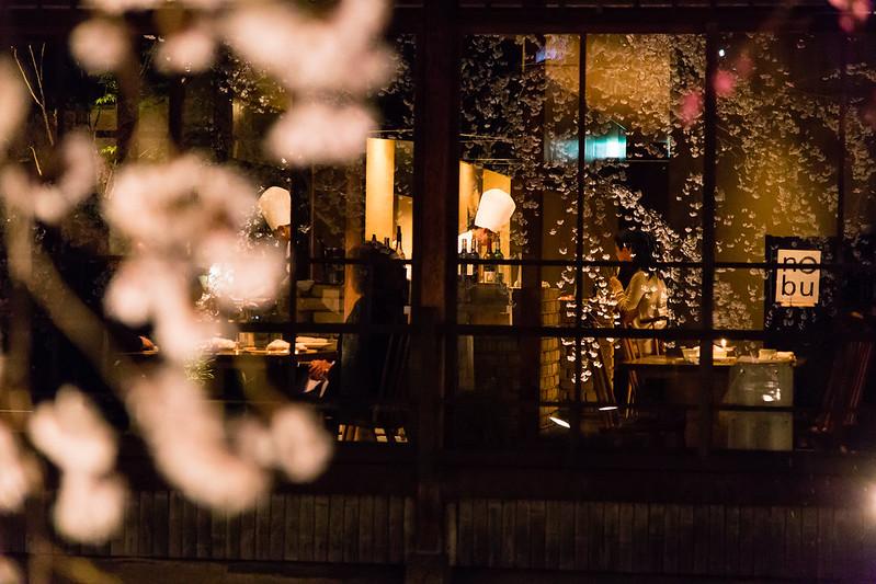 祇園白川宵桜