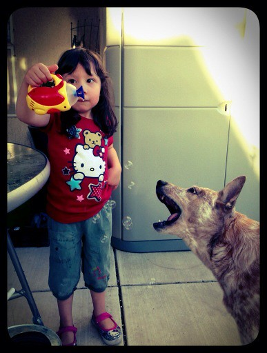 Blowing bubbles for the puppy dog
