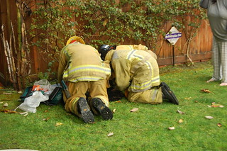 Cat Resuscitation Attempt by Los Angeles Firefighters. © Photo by Austin Gebhardt. Click to view more...