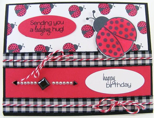 SOL April Ladybug Hug Card
