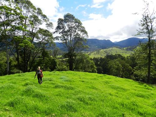 autumn cloud grass fence walking bush hiking farm border foliage pasture killarney queensland vegetation april bushwalk tramping thehead condamine whiteswamp koreelah