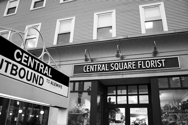 Fresh Eye Friday: A Stake in Central Square