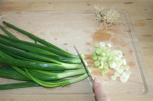 15 - Frühlingszwiebeln in Ringe schneiden / Cut spring onions in rings