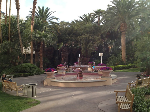 Flamingo Hotel courtyard