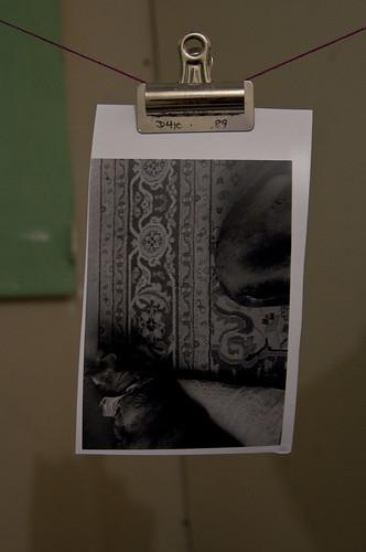 darkroom01