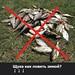 Щука как ловить зимой?