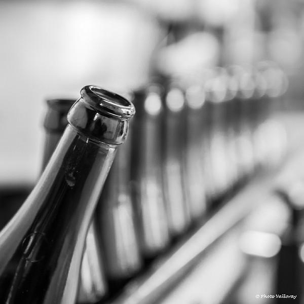 Beerhop_De Troch  IMG_3772