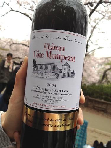 持参した赤ワイン。桜をバックに。 SnapDishユーザ交流会@井の頭公園