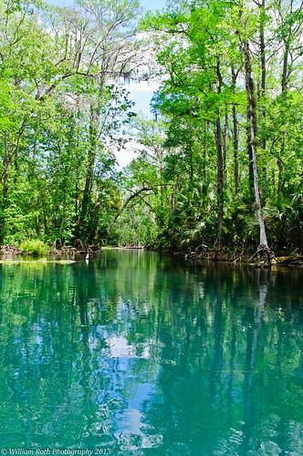 river florida kayaking silverriver