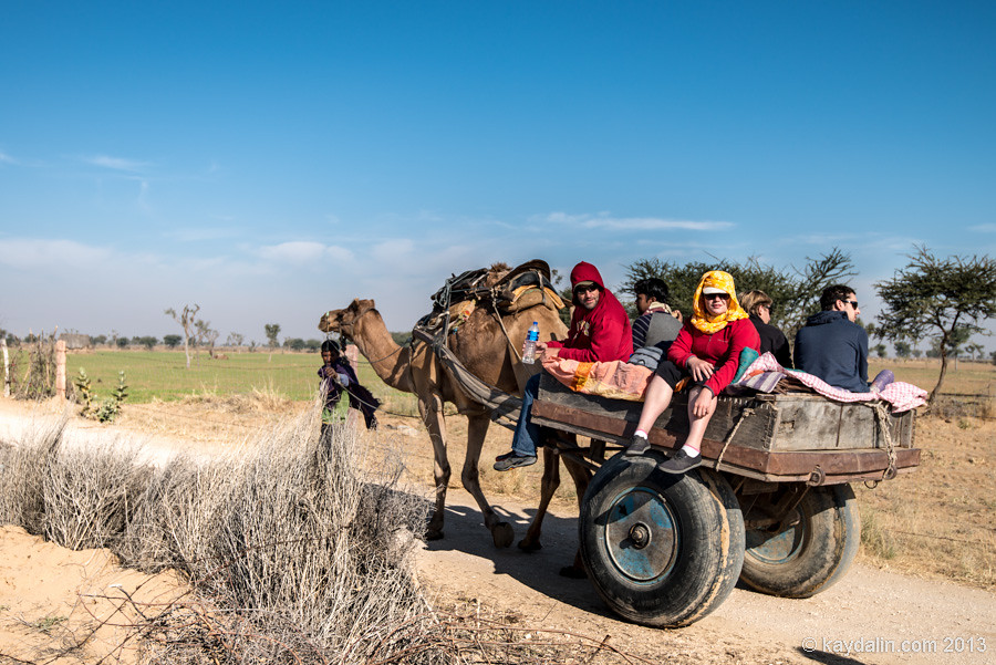 Путешественники в пустыне на верблюде