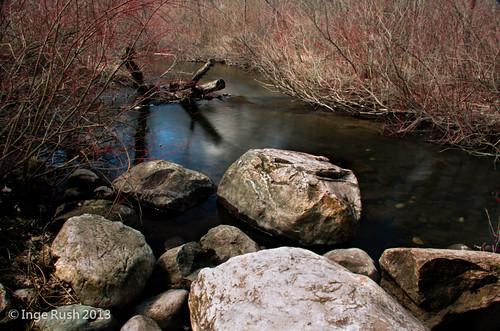 Kellogg Forest - Augusta Creek