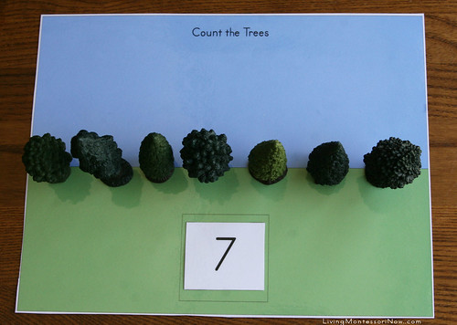 Count the Trees Activity