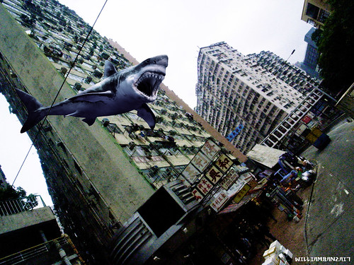 SHARK SPOTTED IN HONG KONG by WilliamBanzai7/Colonel Flick
