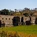 Kumbhalgarh-4