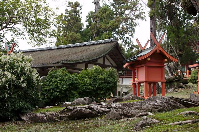1081 - Nara