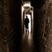 L'homme dans l'ombre by Ok Coraline