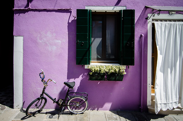 Flowers in the window and purple paint on the island of Burano.