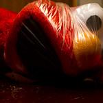 Elmo  plays with a plastic bag