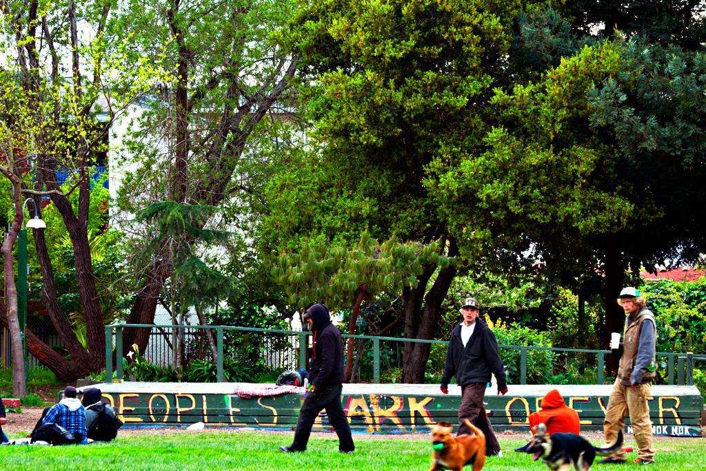 People's-Park-in-3-13--Berkeley-3