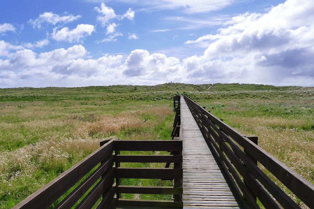 Boardwalk at St Cyrus