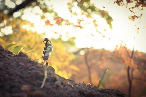 カメラロール-9871