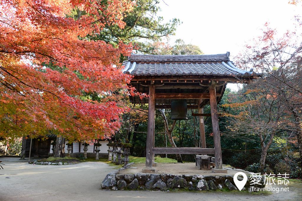 京都赏枫景点 高雄西明寺 11