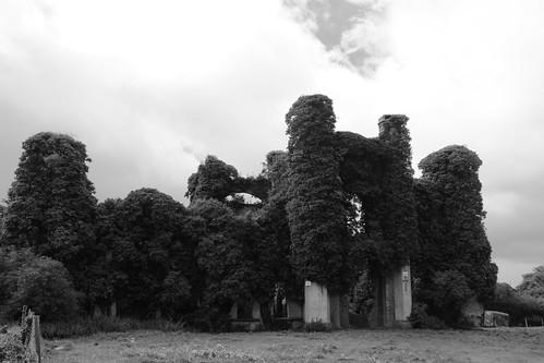 Moydrum Castle, Co. Westmeath