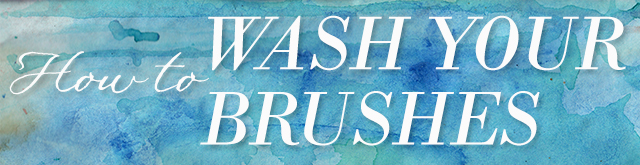 wash-brushes