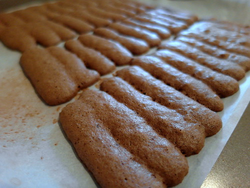 chocolate lady fingers