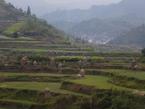 Guizhou13-Kaili-Shiqiao (96)