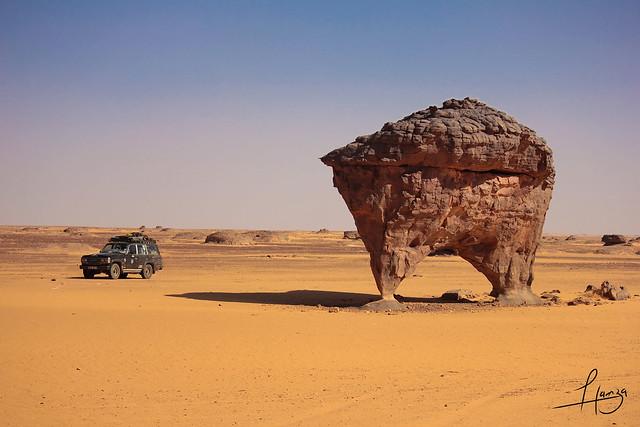 اجمل صحراء في العالم  - صفحة 2 8639318455_e360c060d6_z