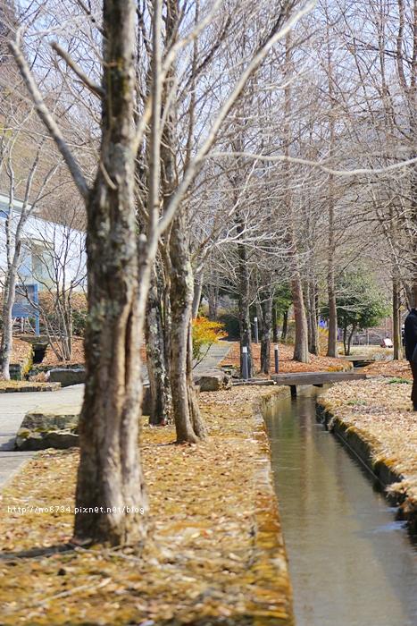 20130307_ToyamaJapan_2935 f
