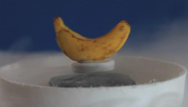 Mag Lev Banana