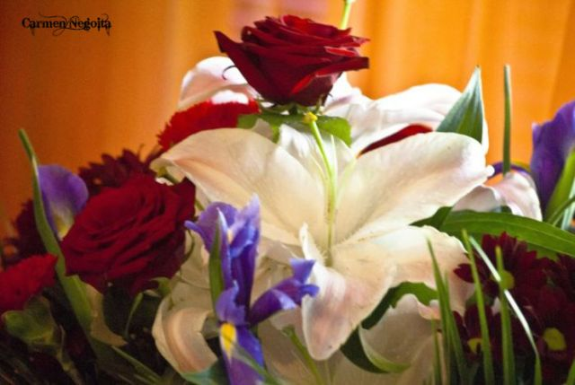 Buchet de flori_8