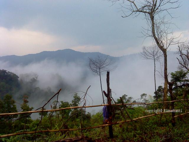 Kabut di perbukitan perbatasan cisolok-banten