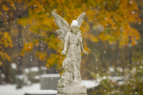 old november autumn snow ny newyork nature cemetery graveyard leaves weather statue angel landscape outside outdoors snowflakes scenic historic foliage snowing snowfall nys rochesterny westernnewyork wny monroecounty mounthopecemetery dandangler