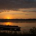 Golden Silhouette by SueZinVT