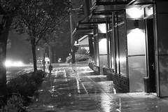 street scenes-3