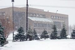 March 10, 2013: Snowy Sunday