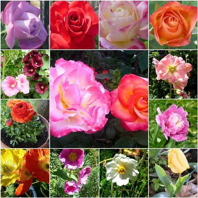 flowers mosaic2