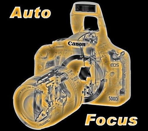 Level 4 Auto Focus