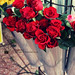 spring flowers [6/6] by Aisha Al-Qahtani