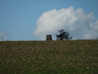 13 04 30 TP2735 - Darwell Wood