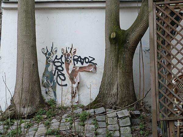 derrière les arbres.jpg